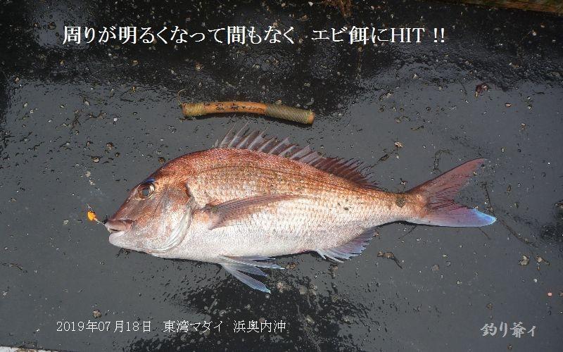 004_20190718125901
