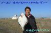 Filename_p10108095f11_2