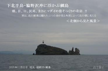 016_blog_up