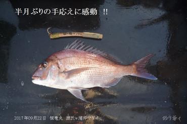 005_blog