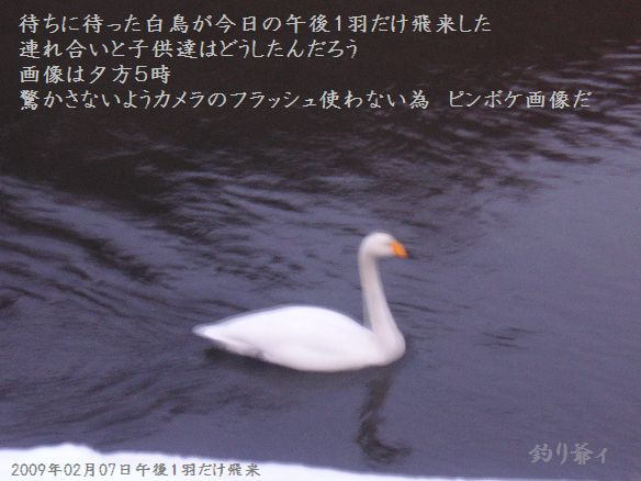 200902_025
