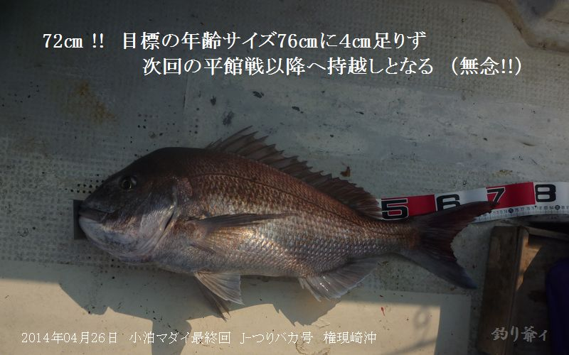 006_blog